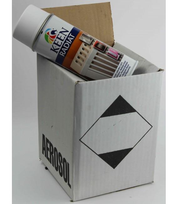 Peinture Radiateur   Cartons De 4 Bombes De Peinture Radiateur