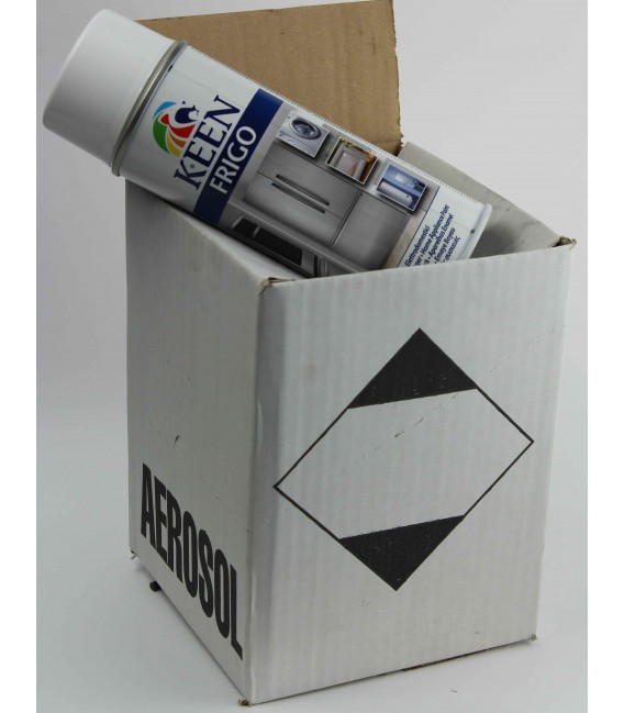 Peinture Frigo - Electroménager - Carton de 4 bombes de peinture frigo blanc émail
